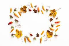 Autumn Frame On White Background Stock Afbeeldingen