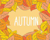 Autumn. Frame wilted leaves. Yellow and orange foliage of trees. Stock Images