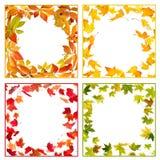 Autumn Frames Fotos de archivo libres de regalías