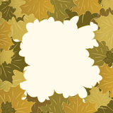 Autumn framework from maple leaves Royalty Free Stock Photos