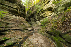 Autumn in French Canyon,. Early fall/autumn morning in French Canyon with water lightly flowing through the canyon.  Starved Rock State Park, Illinois Royalty Free Stock Photography