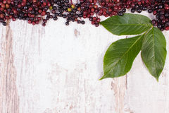 Autumn fresh elderberry with leaf and copy space for text on old wooden background Royalty Free Stock Images