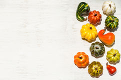 Autumn fresh organic vegetables background Royalty Free Stock Image