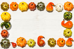 Autumn fresh organic vegetables background Stock Photography