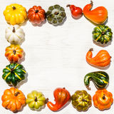 Autumn fresh organic vegetables background Royalty Free Stock Images