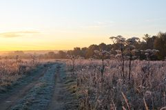 Autumn frosts Royalty Free Stock Images