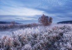 Frozen nature. Cold autumn sunrise Royalty Free Stock Image