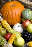 Autumn Fruit 3. An assortment of autumn fruits provide a colorful display royalty free stock images