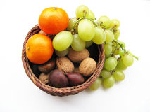 Autumn fruit Royalty Free Stock Photo