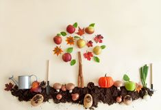 Free Autumn Fruit And Vegetable Garden Royalty Free Stock Photography - 128605197
