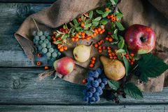 Autumn fruit and berries. On burlap and wooden background, view from above Stock Image