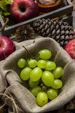 Autumn fruit composition royalty free stock images