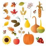 Autumn fruit and foliage Royalty Free Stock Photography