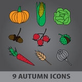 Autumn fruit icons eps10 Royalty Free Stock Images