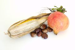Autumn Fruit, Nuts & Vegetable. Dried ear of corn, pomegranate and chestnuts Stock Photos