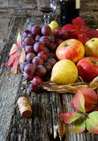 Autumn fruit-piece with fruits and red wine. Autumn still life with fruits in a wicker basket and bottle of red wine Royalty Free Stock Image