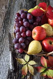 Autumn fruit-piece with fruits. Autumn still life with fruits in a wicker basket Stock Photo