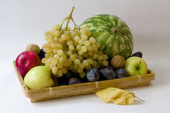 Autumn fruit still life Royalty Free Stock Photo