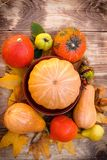 Autumn fruit and vegetable, healthy eating, healthy food - harvest on table. Harvest on table - thanksgiving, seasonal fruit and vegetable, pumpkin and squash Royalty Free Stock Image