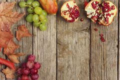 Autumn Fruits Photo stock