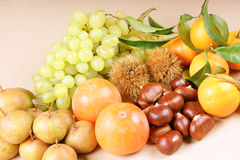 Autumn fruits. Assortment of autumn fruits over a light brown background Royalty Free Stock Photography