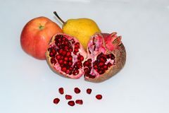 Autumn Fruits imagem de stock