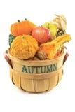 Autumn fruits. Stock Photography
