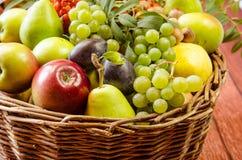 Autumn Fruits Imagens de Stock