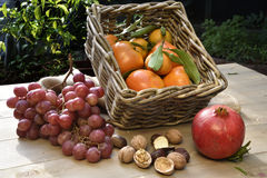Autumn Fruits Royaltyfria Foton
