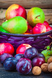 Autumn Fruits Immagine Stock Libera da Diritti