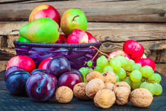 Autumn Fruits Stockbilder