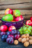 Autumn Fruits Stockfoto