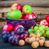 Autumn Fruits Immagini Stock