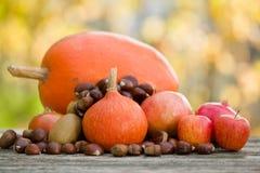 Autumn Fruits Fotos de archivo