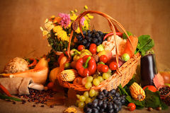 Autumn Fruits And Vegetables Stock Photography