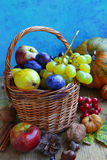 Autumn fruits assortment basket with grapes, plums, pears and ap Royalty Free Stock Image