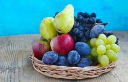 Autumn fruits assortment Stock Photos