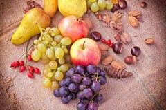 Autumn fruits - Autumn harvest Stock Image