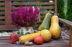 Autumn fruits on the bench Royalty Free Stock Photo