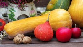 Autumn fruits on the bench Stock Photography