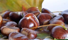 Autumn fruits, chestnuts and grapes. Composition with chestnuts and grapes, dried leaves, white background Royalty Free Stock Photos