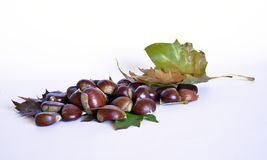 Autumn fruits, chestnuts and grapes. Composition with chestnuts and grapes, dried leaves, white background Royalty Free Stock Photo