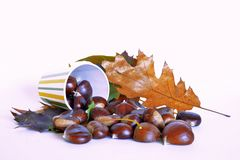 Autumn fruits, chestnuts and grapes. Composition with chestnuts and grapes, dried leaves, white background Stock Image