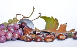 Autumn fruits, chestnuts and grapes. Composition with chestnuts and grapes, dried leaves, white background Royalty Free Stock Image