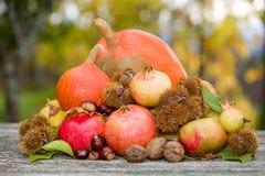 Autumn fruits Royalty Free Stock Photo