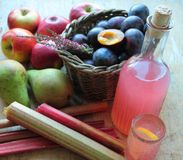 Autumn fruits with home made juice Royalty Free Stock Photos