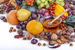 Autumn fruits and honey Stock Photography