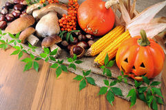 Autumn fruits like pumpkin, mushroom and chestnuts Royalty Free Stock Images
