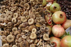 Autumn fruits with mushrooms and chestnuts Stock Images