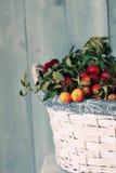 Autumn fruits Stock Photo